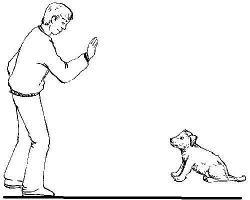 Дуа от вреда собак
